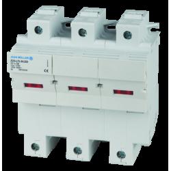 CAMELION 36863